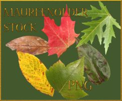 STOCK PNG leaves by MaureenOlder