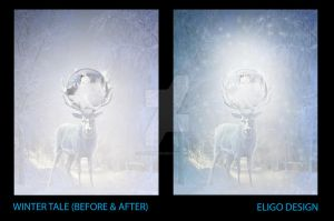 Winter Tale (before/after) by EligoDesign