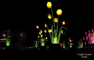 ILight Garden by phyllopillow