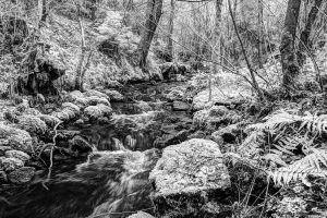 Infrared Flowing Water 2 by Okavanga