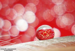 Red Drop And Bokeh by lindahabiba