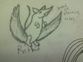 Ratbirds by Beccadex