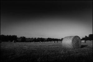 Straw Bales by Canyeolay