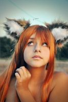 Spice and Wolf - Horo 04 by CrazyRabbit