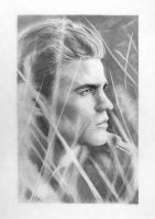 TVD - Paul Wesley by TomsGG