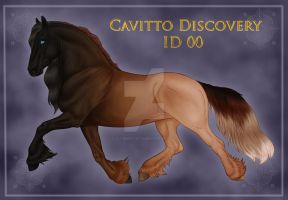 Cavitto Discovery Page Example by sVa-BinaryStar