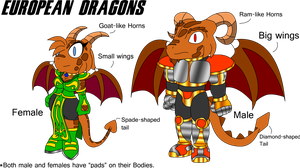 The Dragons of Arrow's World -European Dragons- by spdy4