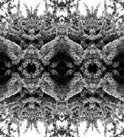 Firethorn Quadrilaterally Symmetrical Stereoscopy by aegiandyad