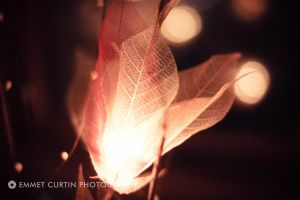 leaf light by dynamicdestruction
