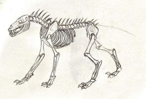 alien breed skeleton by Xunau66