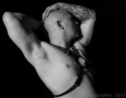 Lodovica Leather LL1 Harness S 02 by LodovicaLeather