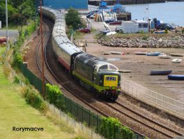 BR D9009 'Alycidon' at Teignmouth by The-Transport-Guild