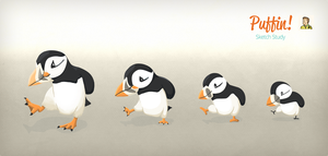 Puffin - Sketch Study by jimzip