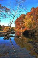 Fall colors over water by MikeysPhotos
