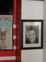 Elvis II by John Harding at Famous 50's by davincipoppalag