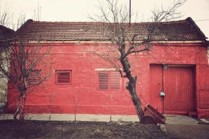 red house by DejanB