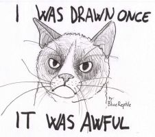Grumpy Cat by PlaviGmaz