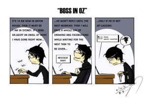 'The 233' - Boss in Oz by NK-C