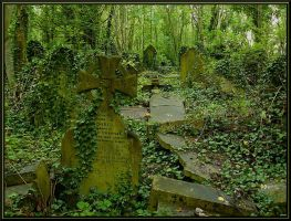 Abandoned graveyard. by scarfacesteve