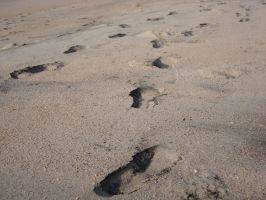 Steps on the Sand by Lusitana-Stock