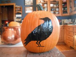Crow Pumpkin by FranklymyDeer