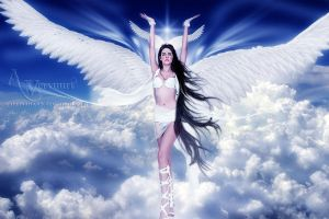 The Flying Angel by annemaria48