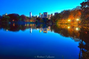 Central Park by ashamandour