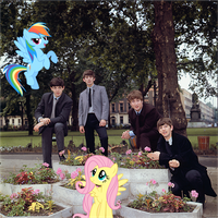 Fluttershy, Rainbow Dash and The Beatles by Bronyman1995