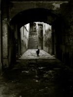 Accomplished Loneliness by MR-The-Outsider