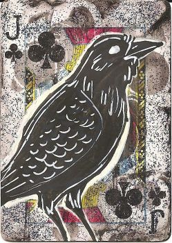 ACEO - Jack the Raven by MaryOfExeter
