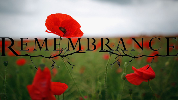 Remembrance Day 1 by SERDD