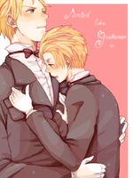 APH: Sorted like Gentlemen by milaa-chan