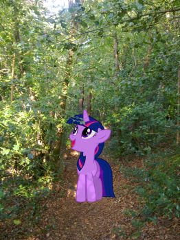 A Stroll in the Forest by Makenshi179
