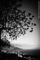 Funchal View by Tiagoto