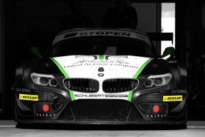 bmw z4 gt3 by donfoto