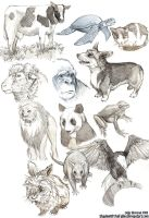 Animal Sketches by ShadowOfTheFallen