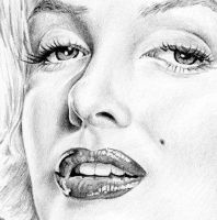 Marilyn fur detail by Daddyo4