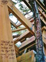 Our Treehouse Built by My Husband {Photo 43} by Empress-XZarrethTKon