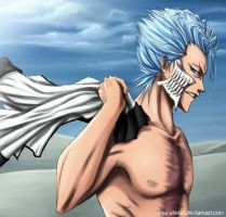 SS - Grimmjow Jaegerjaques by Arya-Aiedail