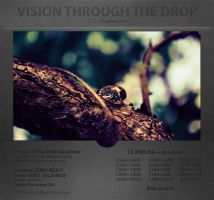 Vision through the drop [Wallpaper] by DDKonstantinov