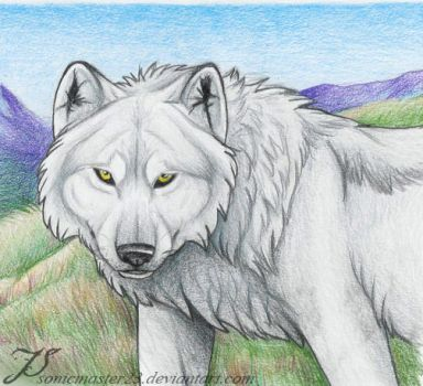 Tundra King by SonicMaster23