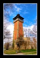 Observation Tower  Burgholzhof by DeviantDrax