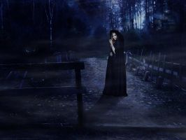 The Witch on Bridge by HalUet