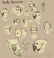 Hayden Expression Sheet by TeknicolorTiger