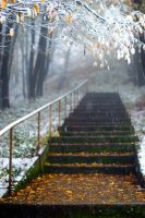 First snow, Bulgaria 2 by Bomb-Creator