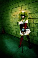 Harley Quinn: Welcome To The Madhouse. by kay-sama