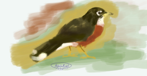 Robin Painting by WhiskerfaceRumpel