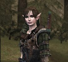 My dalish warden by wargaron
