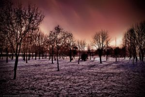 Snow grounds HDR by ScorpionEntity