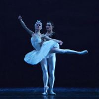Russian ballet: Swan Lake by Iridescent-happinesS